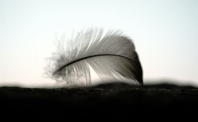 57.©Fotograf Magnus Aronson