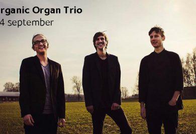 Brännkyrka Kafe - Organic Organ Trio