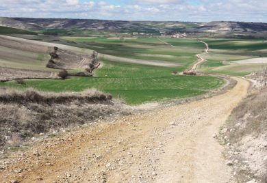 Pilgrimsvandring längs Camino Santiago 15-23 maj med Brännkyrka församling