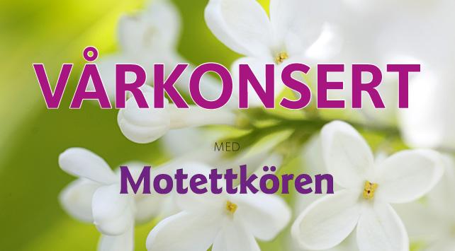 Vårkonsert med Brännkyrka Motettkör